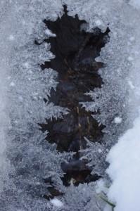 2010 Eisbach, Photographie von Sylvia Stieler